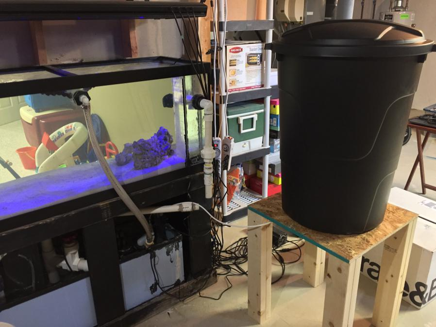 Mike's New Tank (My Wife is Pissed)-img_4718.jpg